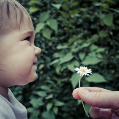 http://pogacia-photo.com/files/gimgs/12_bakonyizsuzsababyfamilyphotography43.jpg