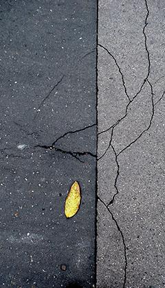 http://pogacia-photo.com/hu/files/gimgs/3_betonart4pogaciabakonyizsuzsa.jpg
